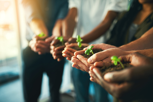 istock Let's grow together 928855684