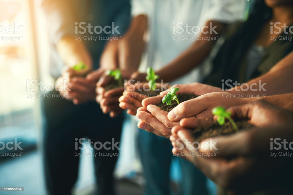Let's grow together stock photo
