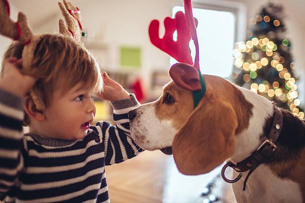 let's hilfe zu santa claus! - kleine jungen kostüme stock-fotos und bilder