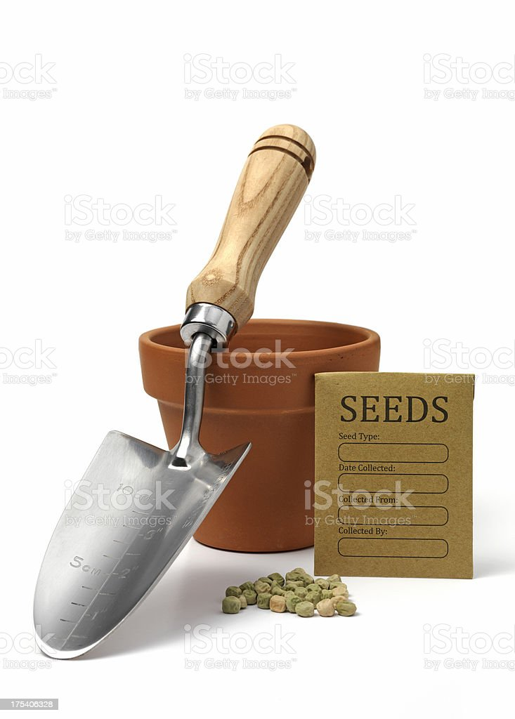 lets plant a flower stock photo
