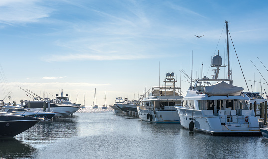 Group of luxury boats on a quiet morning in Coconut Grove, Miami Florida.