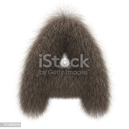 istock Letter A from fur alphabet 151565026