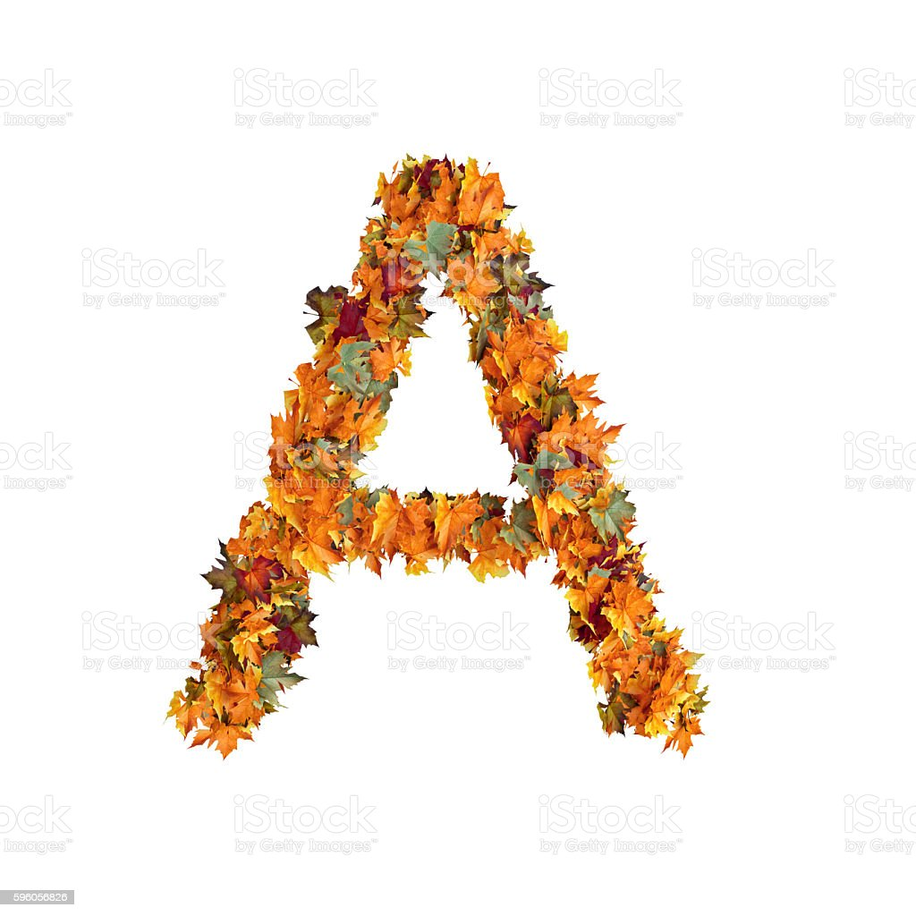 Letter A of Leaf on White Background royalty-free stock photo