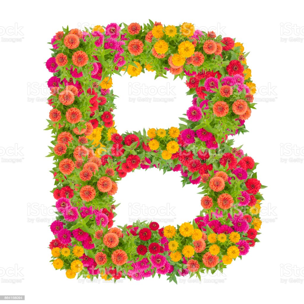 Letter B alphabet made from zinnia flower royalty-free stock photo