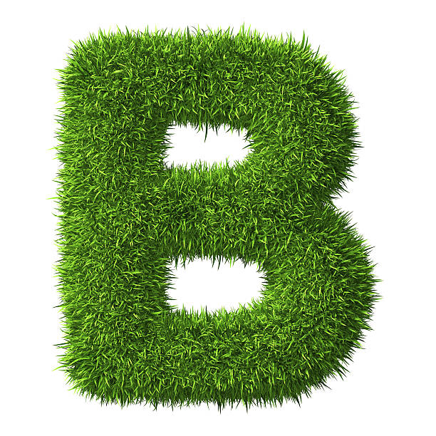 Letter B of grass stock photo