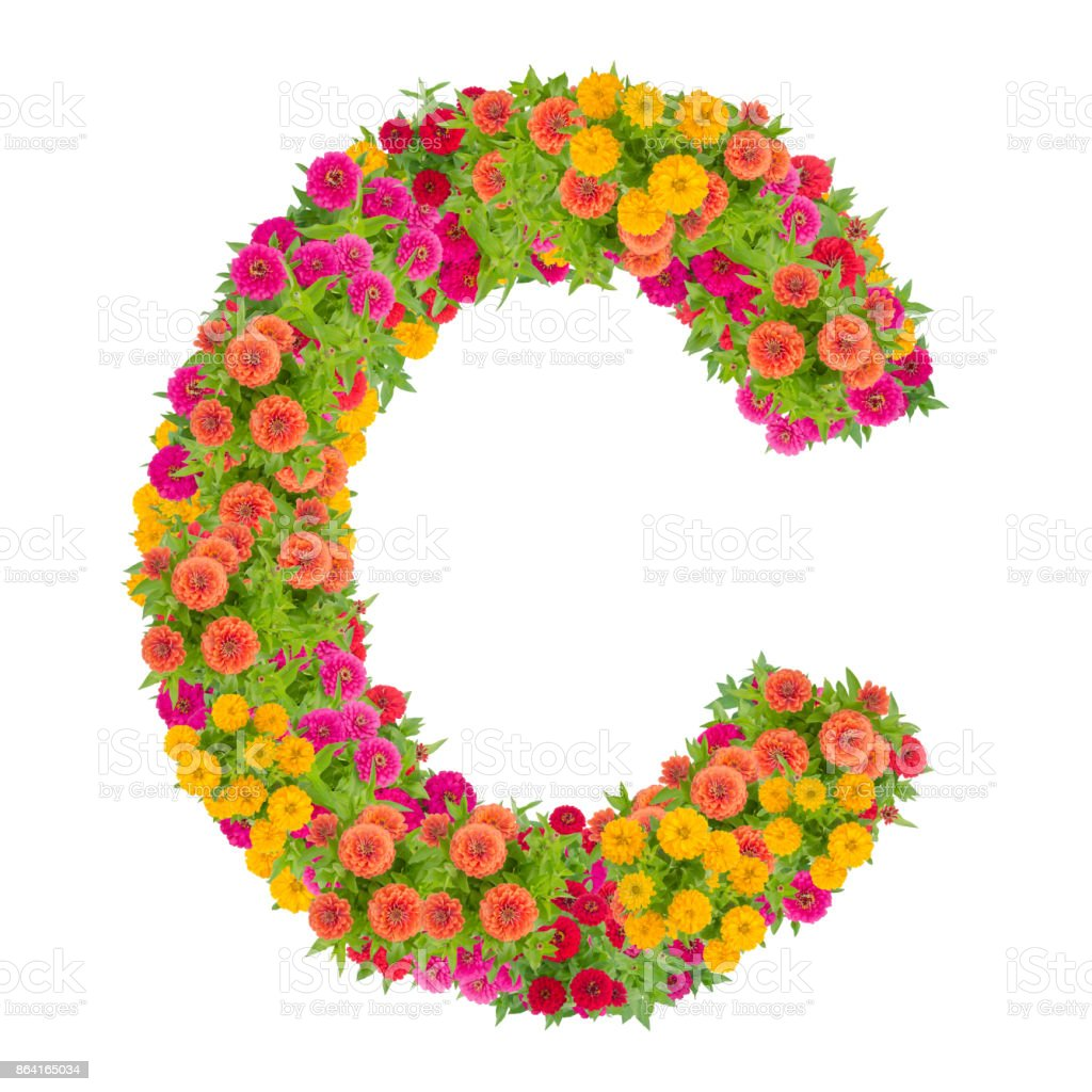 Letter C alphabet made from zinnia flower royalty-free stock photo