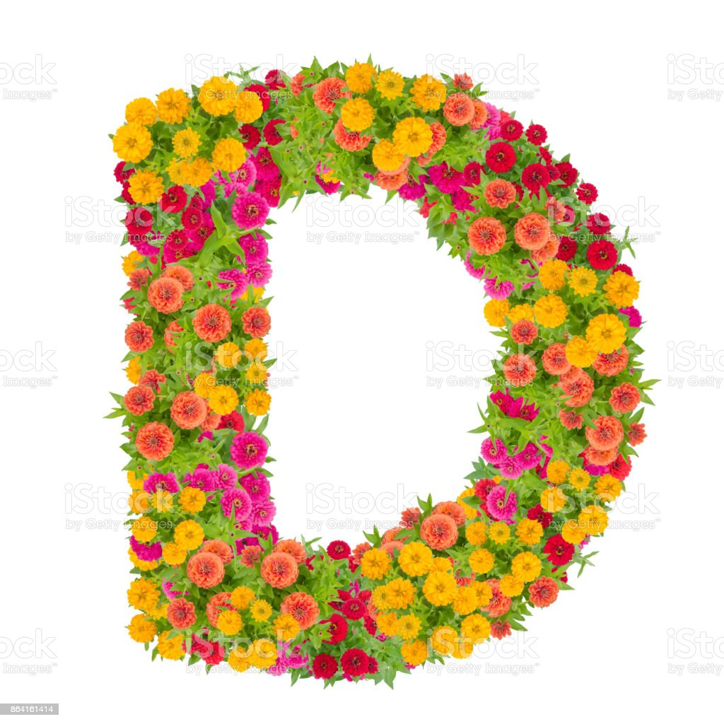 Letter D alphabet made from zinnia flower royalty-free stock photo