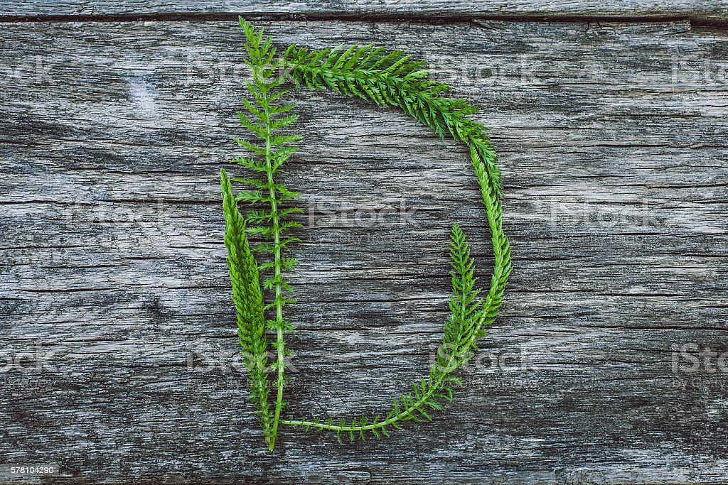 Letter D from leaves on  wooden surface, the English alphabet stock photo