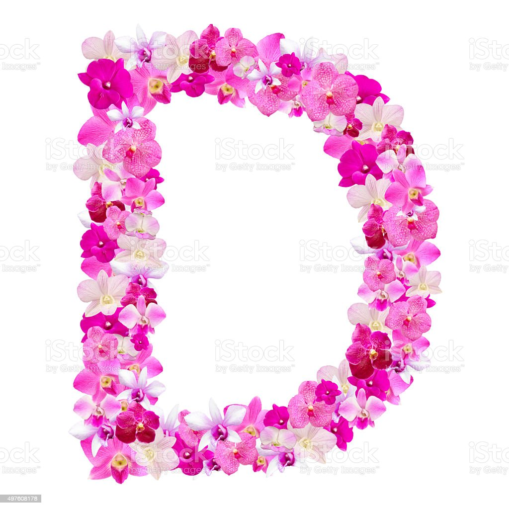 Letter D From Orchid Flowers Isolated On White Stock Photo & More ...