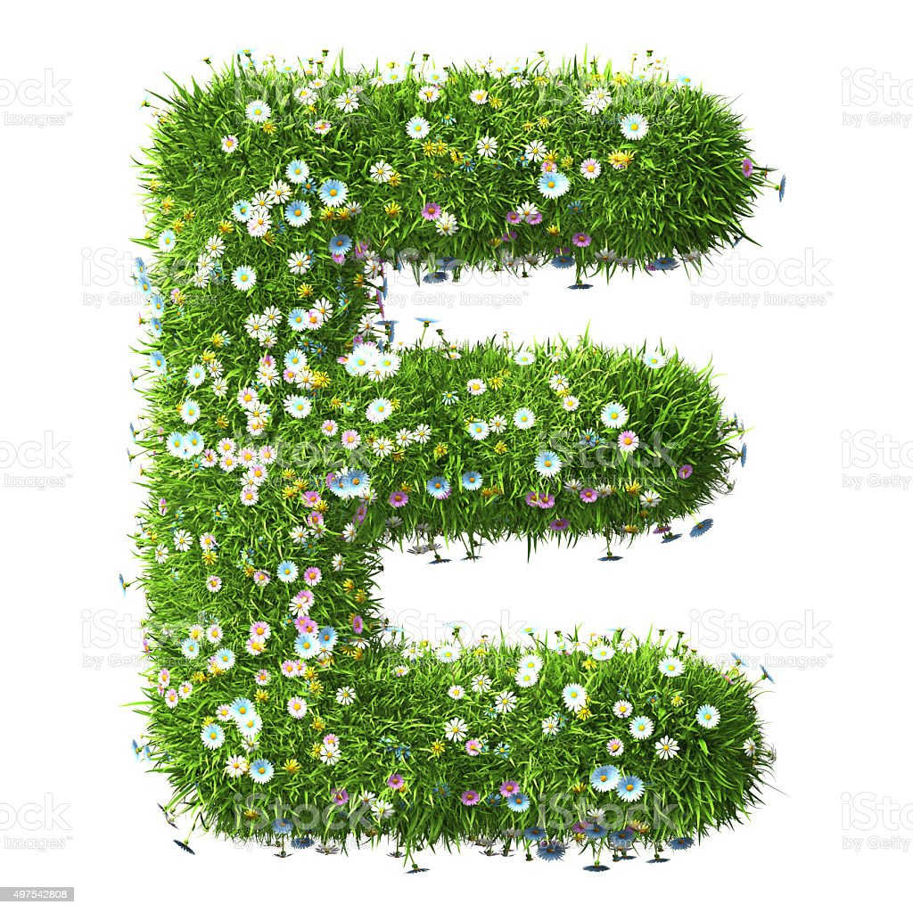 Letter E Of Grass And Flowers stock photo
