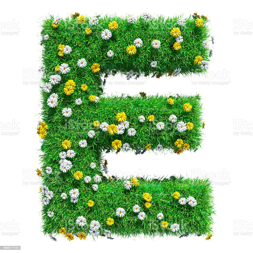 Letter E Of Green Grass And Flowers stock photo