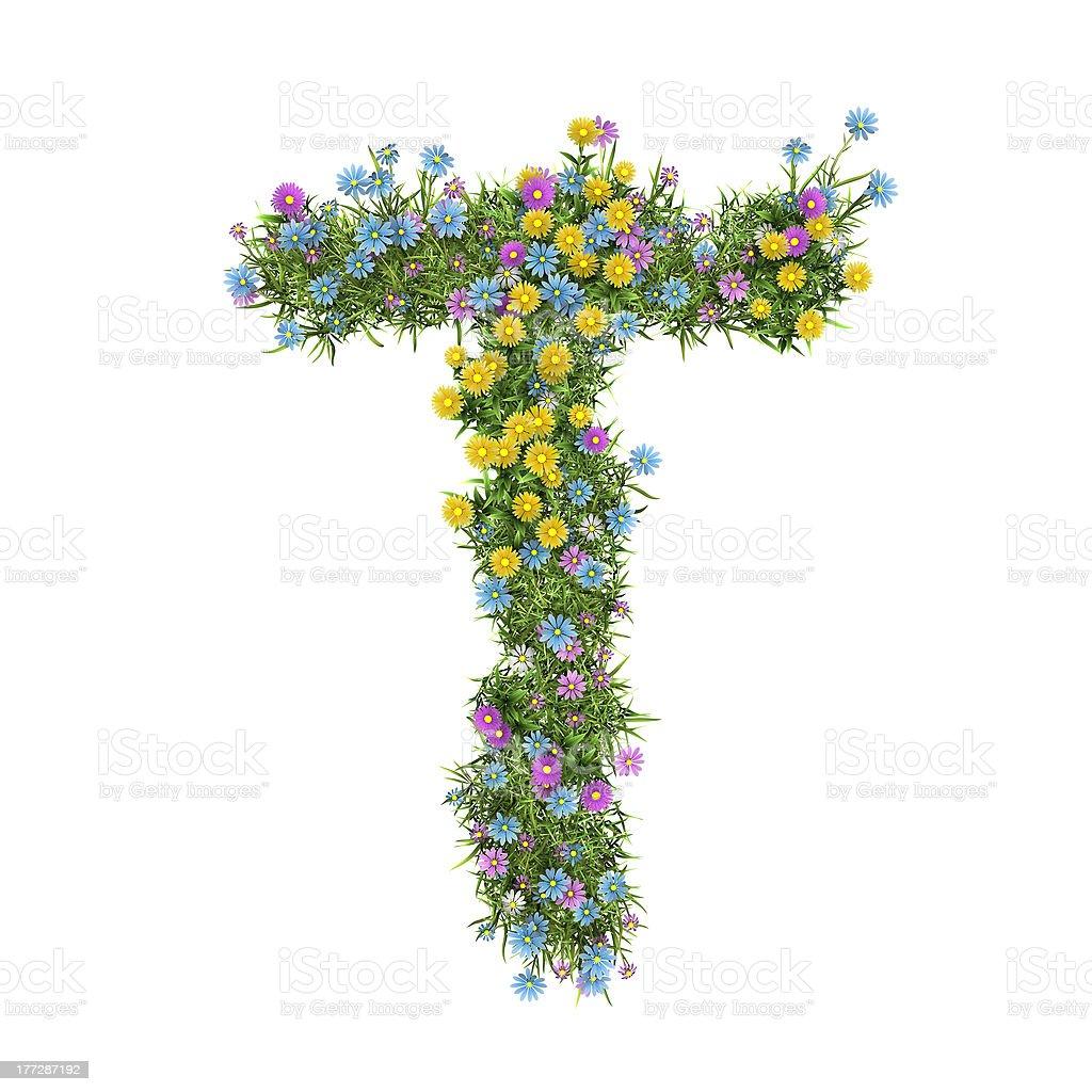 Letter Т, flower alphabet isolated on white stock photo