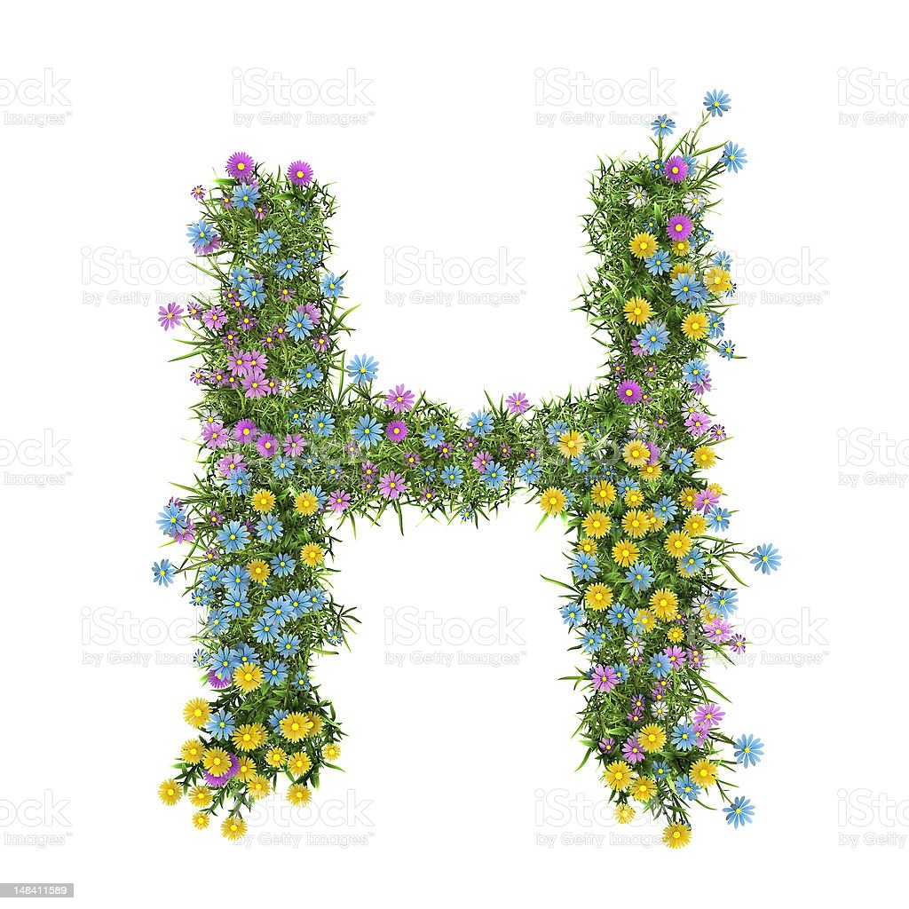 Letter H, flower alphabet isolated on white royalty-free stock photo