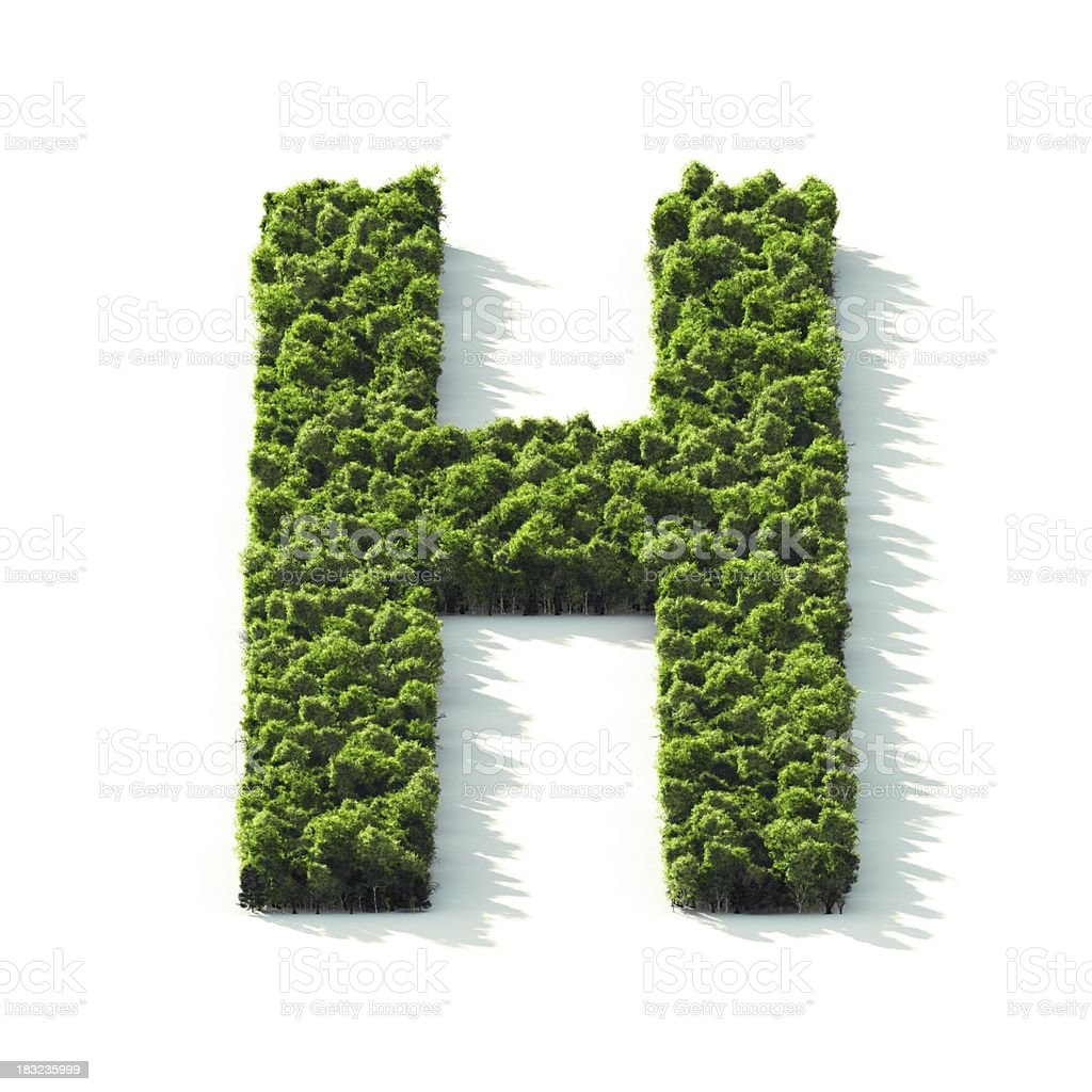 Letter H : Perspective View royalty-free stock photo