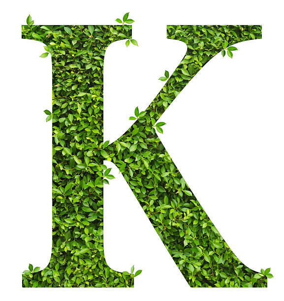 letter k alphabet of green leaves stock photo
