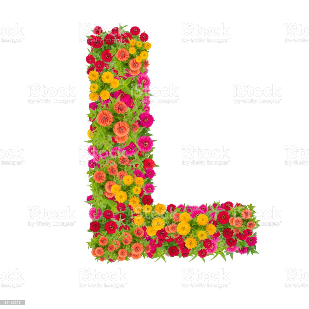 Letter L alphabet made from zinnia flower royalty-free stock photo