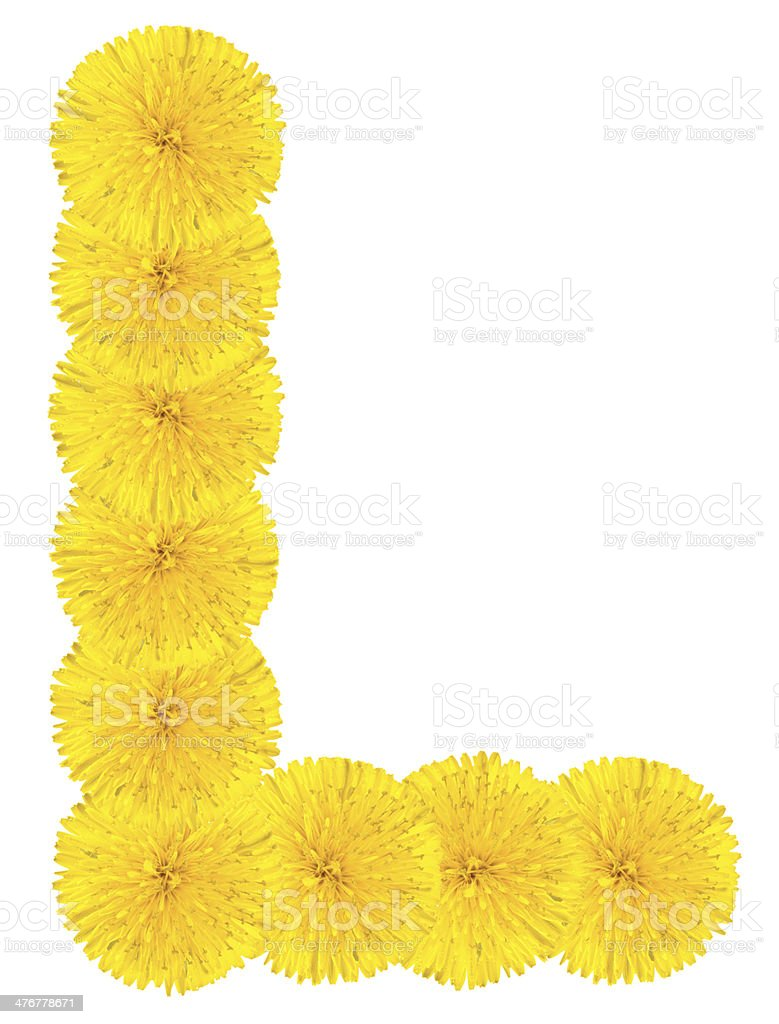 Letter L made from dandelions stock photo