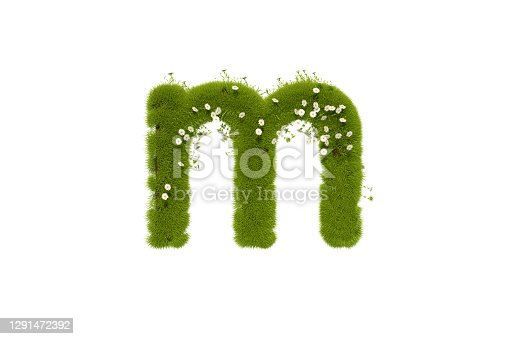 istock Letter M with Grass and Flowers, Lower case 1291472392