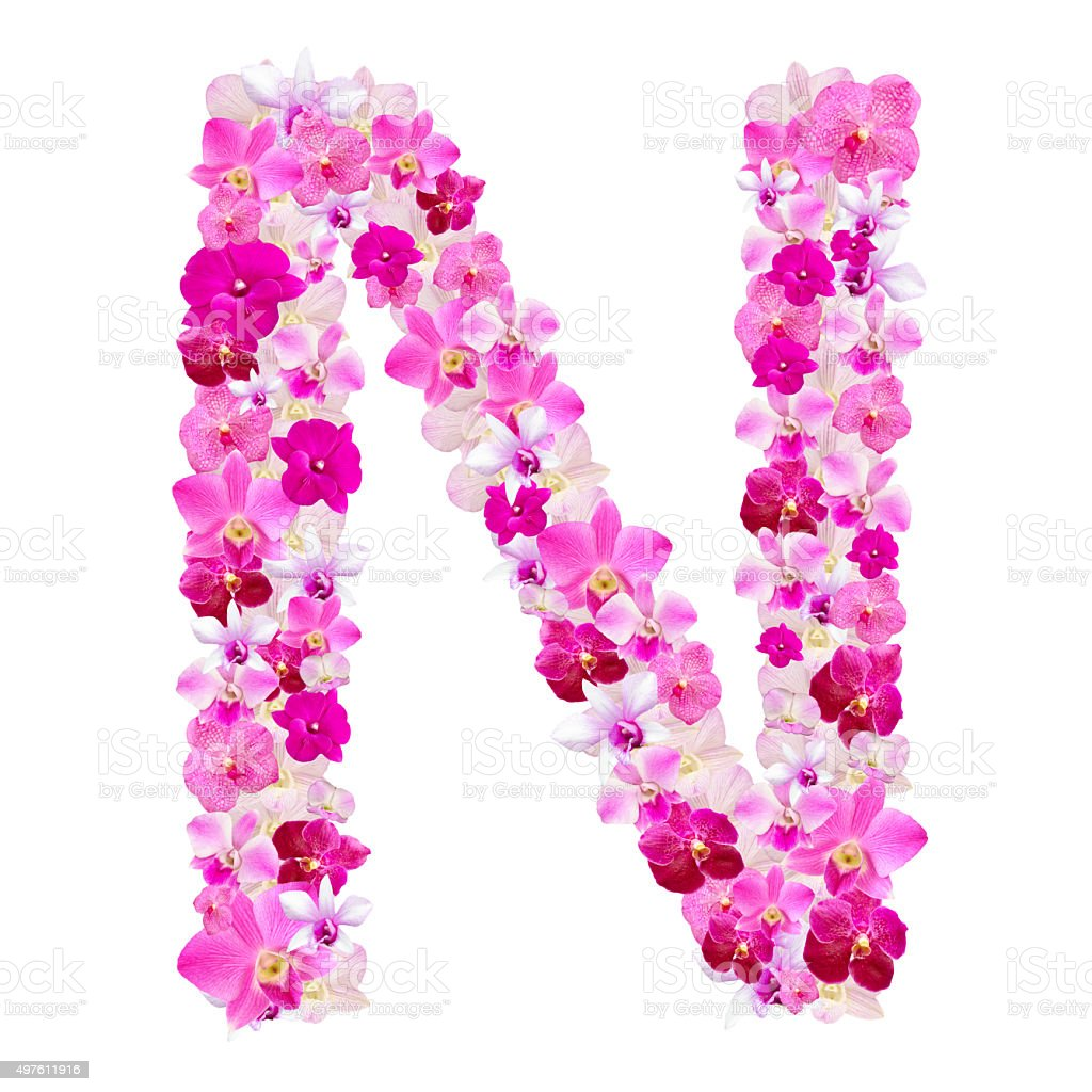 Letter N From Orchid Flowers Isolated On White Stock Photo & More ...