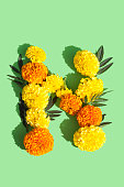 Letter N made of Marigold flowers
