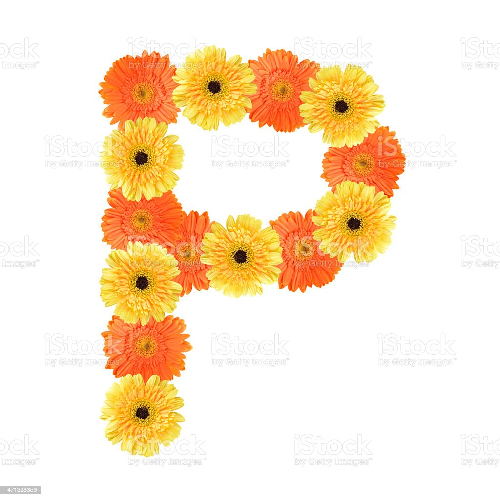 Letter P created by flower royalty-free stock photo