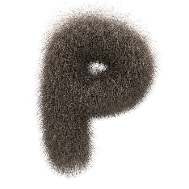 Letter P from fur alphabet Letter P from fur alphabet letter p stock pictures, royalty-free photos & images