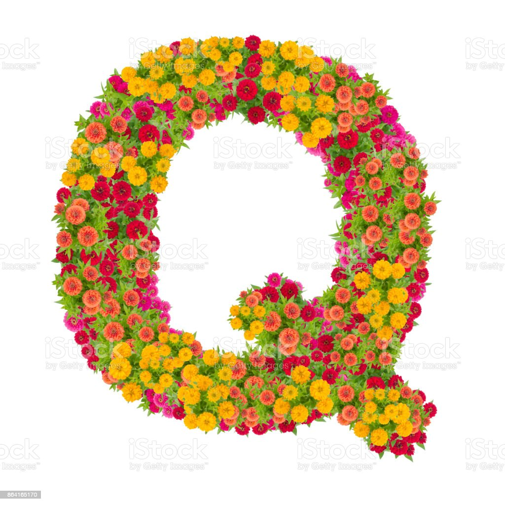 Letter Q alphabet made from zinnia flower royalty-free stock photo