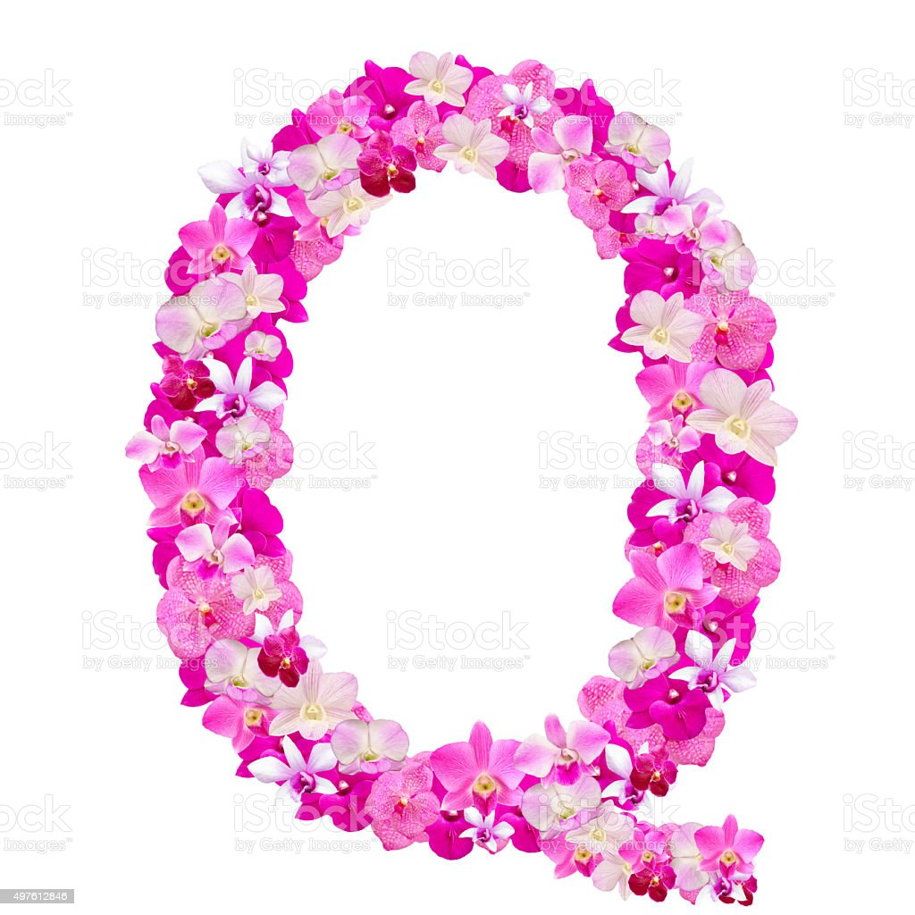 Letter Q From Orchid Flowers Isolated On White stock photo | iStock