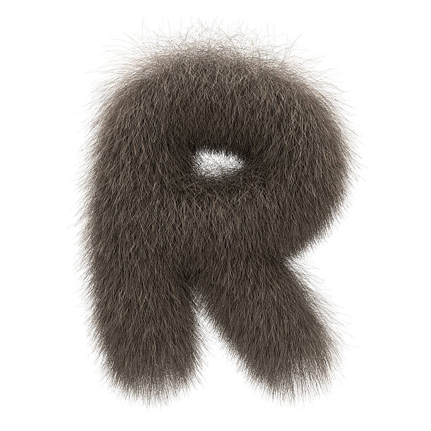 letter r from fur alphabet - animal hair stock photos and pictures