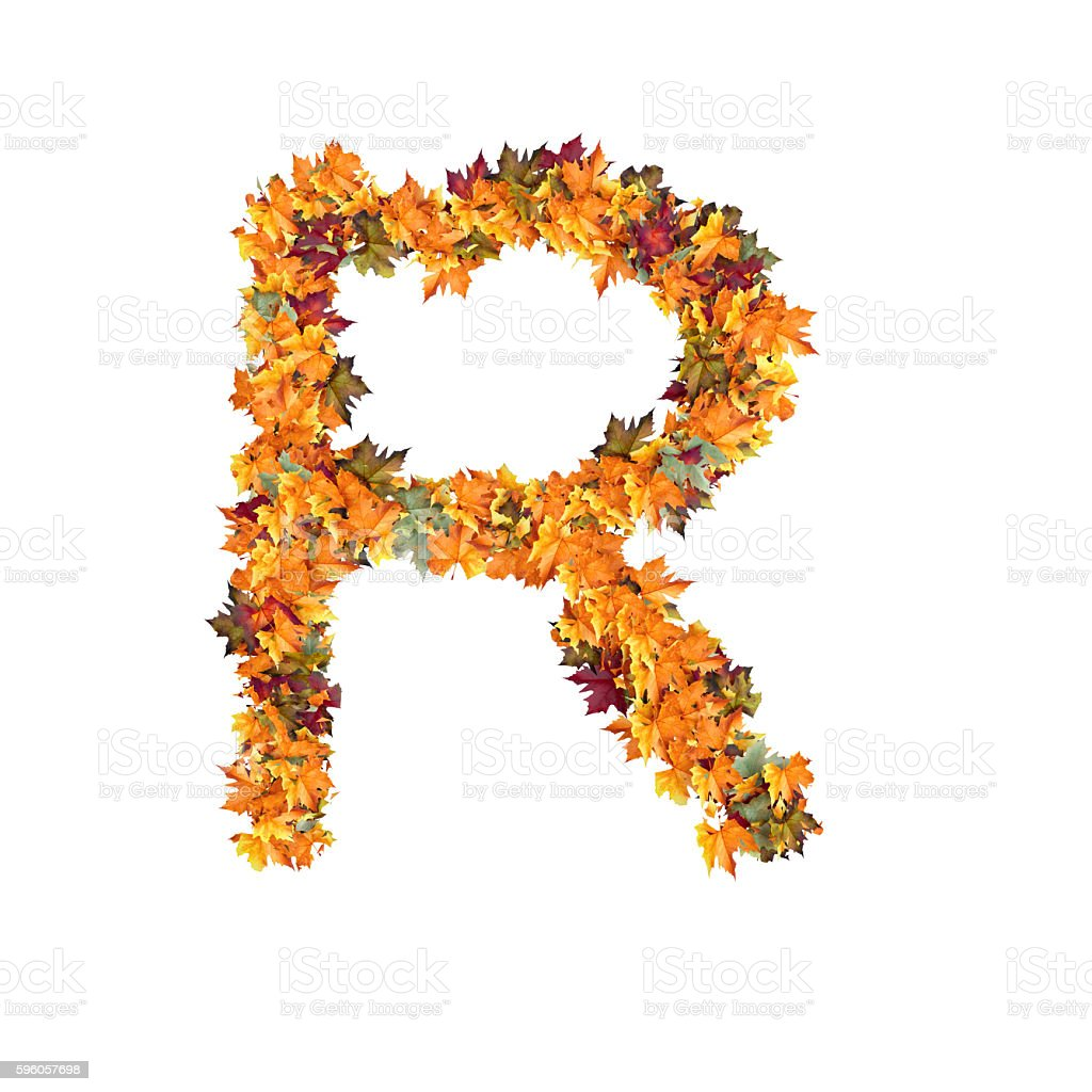 Letter R of Leaf on White Background royalty-free stock photo