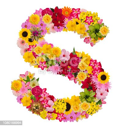 istock Letter S alphabet with flower ABC concept type as logo 1080166994