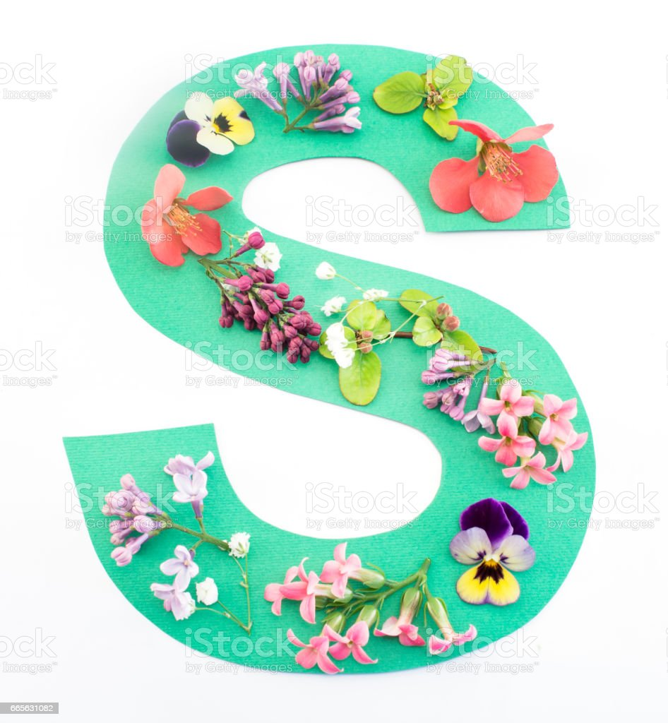 Letter S Made Of Spring Flowers And Paper Stock Photo More