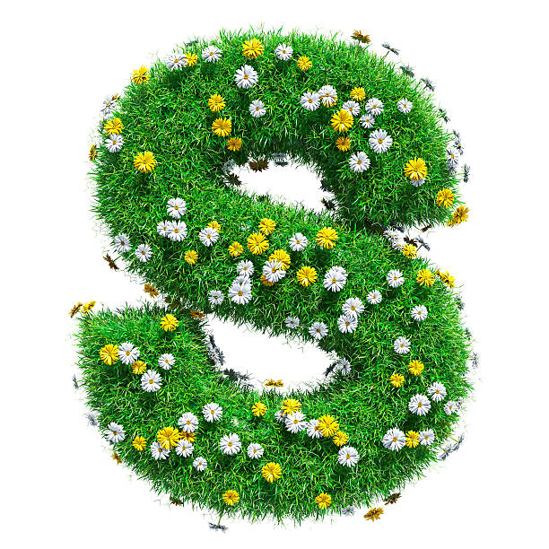Letter S Of Green Grass And Flowers stock photo