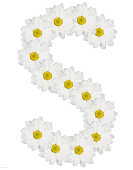 Letter S made from white flowers