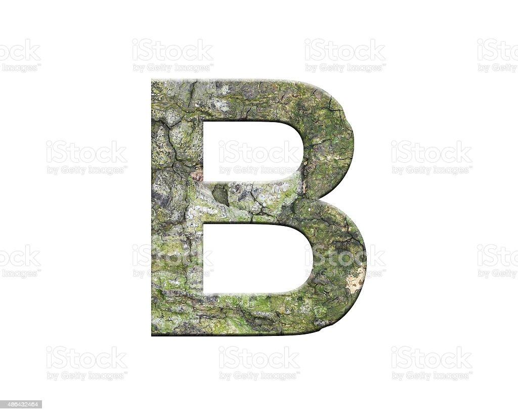 letter striped bark stock photo