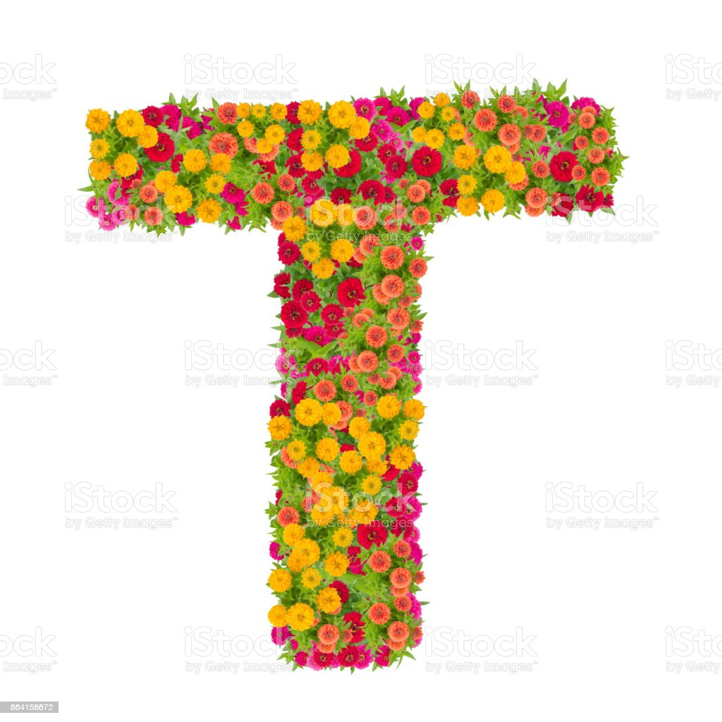 Letter T alphabet made from zinnia flower royalty-free stock photo