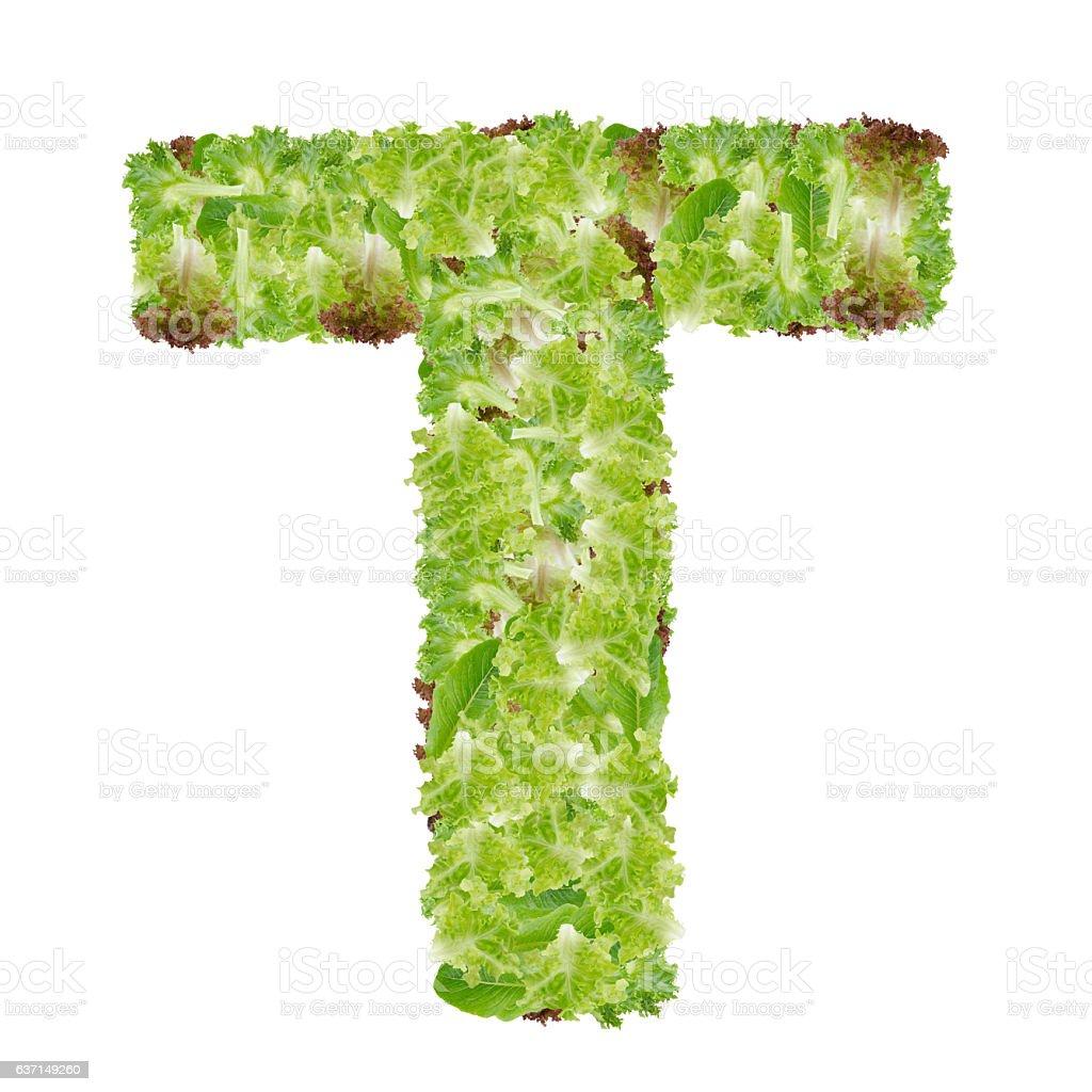 Letter T alphabet with hydroponics leaf  ABC concept type stock photo