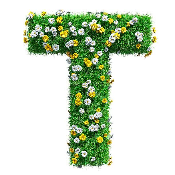 letter t of green grass and flowers - t stock-fotos und bilder