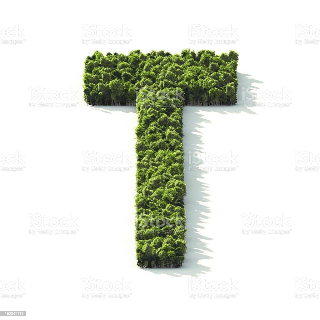 Letter T : Perspective View stock photo
