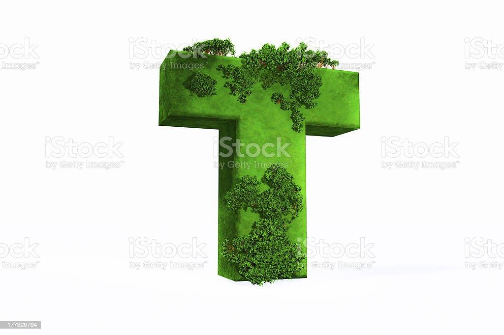 Letter T stock photo
