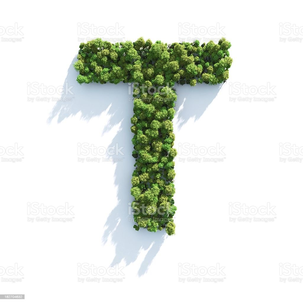 Letter T: Top View stock photo