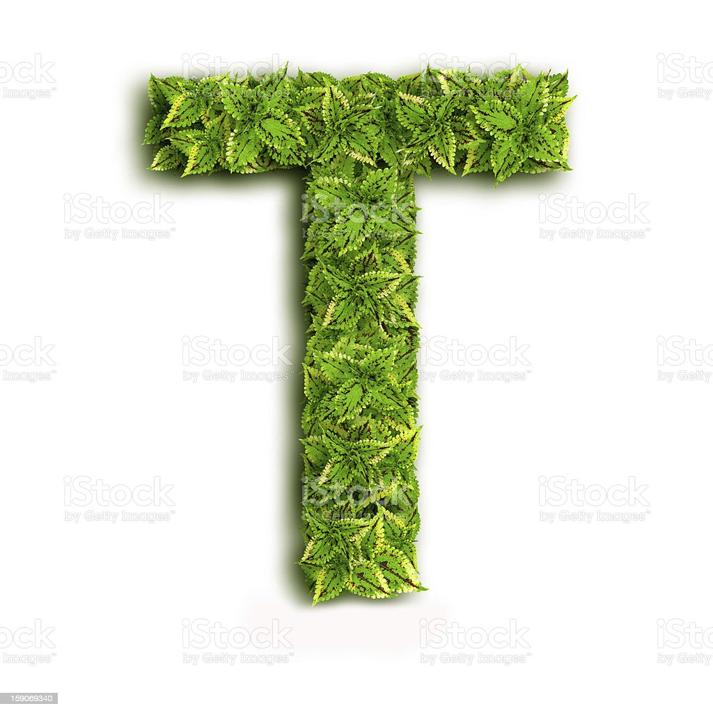 Letter T With Leaves royalty-free stock photo