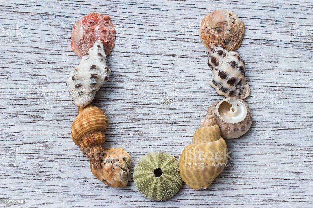 Letter U made of seashell stock photo
