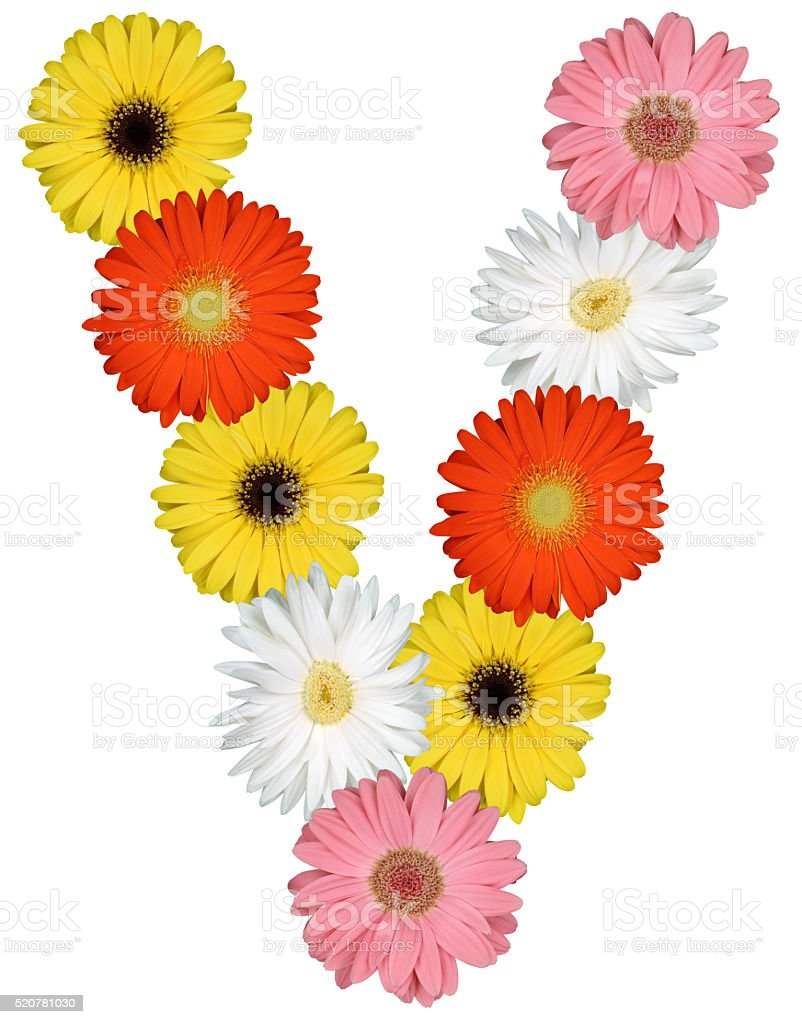 Letter v alphabet from flowers isolated on white stock photo more letter v alphabet from flowers isolated on white royalty free stock photo altavistaventures Images