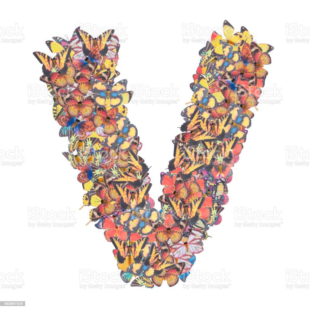 Alfabeto letra V con el tipo de concepto de ABC mariposa como logotipo aislado sobre fondo blanco - foto de stock