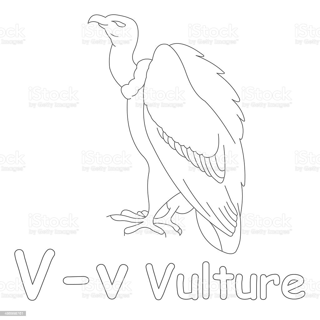 Letter V For Vulture Coloring Page Stock Photo - Download ...