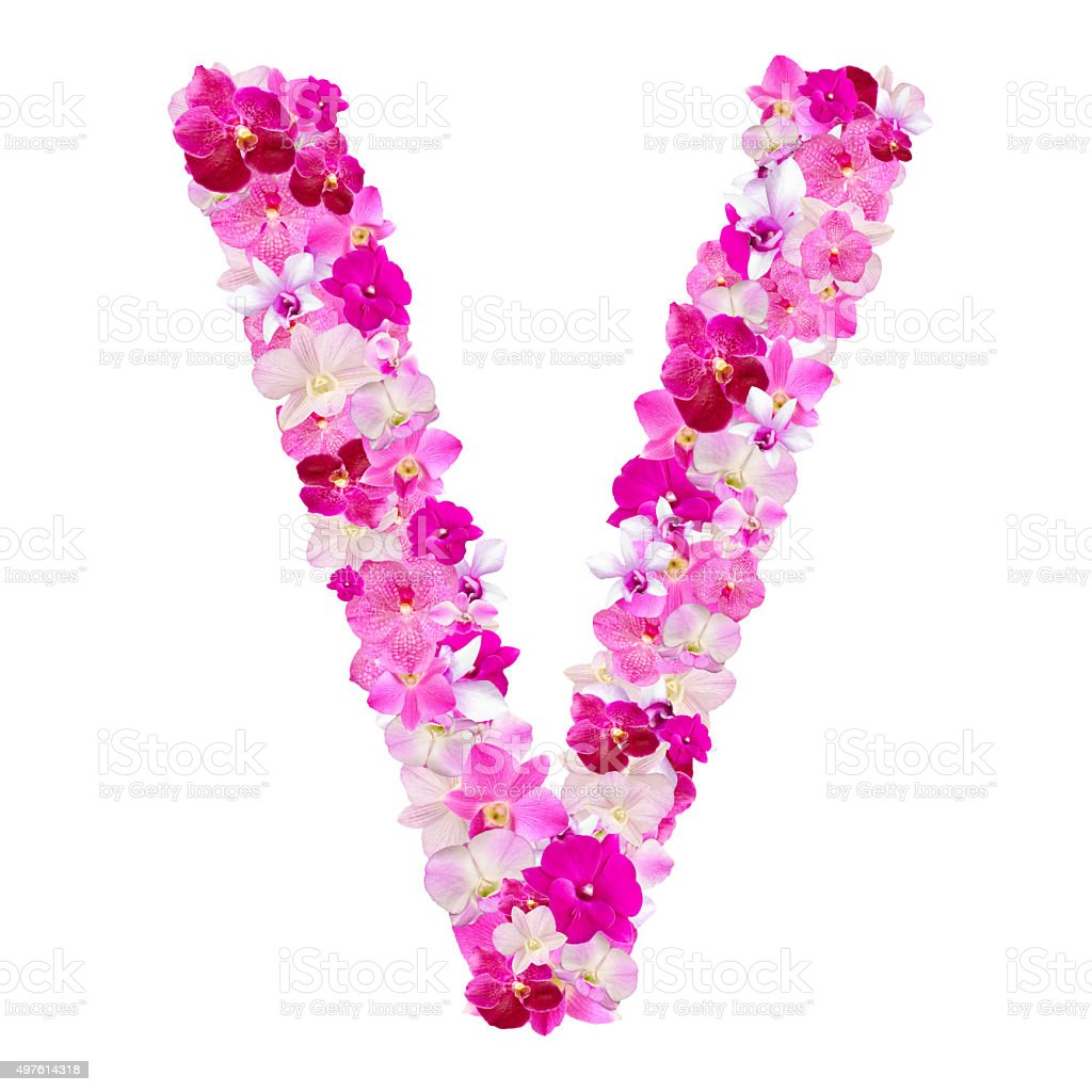 Letter v from orchid flowers isolated on white stock photo more letter v from orchid flowers isolated on white royalty free stock photo thecheapjerseys Gallery