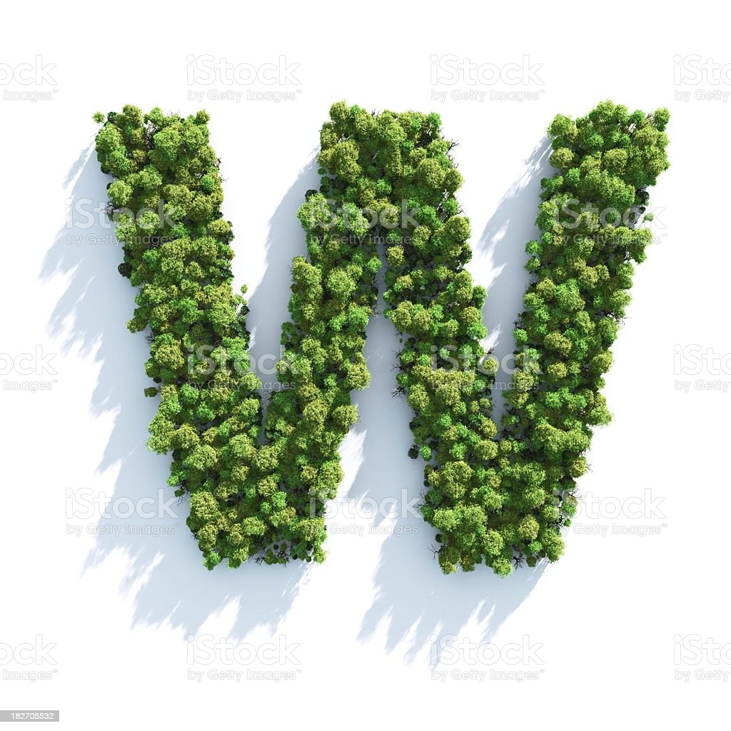 Letter W: Top View stock photo