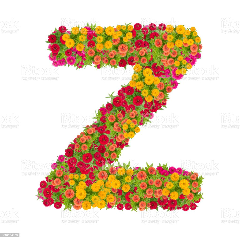 Letter Z alphabet made from zinnia flower royalty-free stock photo
