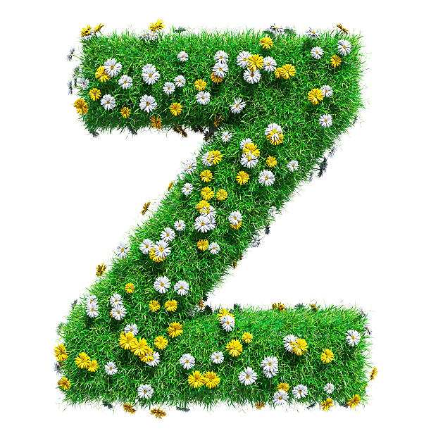 Letter Z Pictures.Best Letter Z Stock Photos Pictures Royalty Free Images Istock